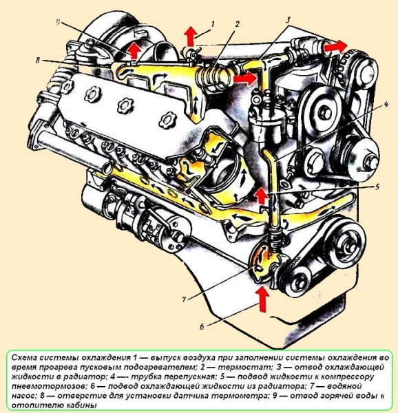 Воздушная пробка система охлаждения фольксваген транспортер купить новый фольксваген транспортер в беларуси